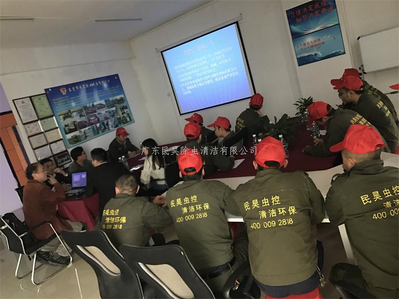 东莞白蚁防治公司主要经验体会和未来发展理念