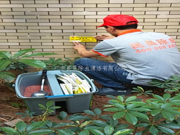 林木病虫害、白蚁防治发展方向